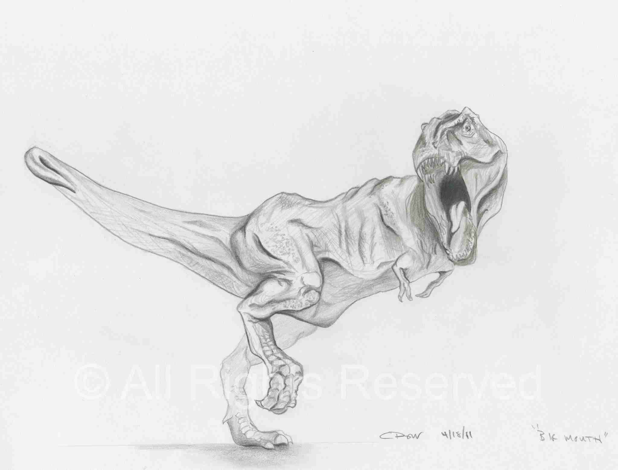 drawing of a t-rex