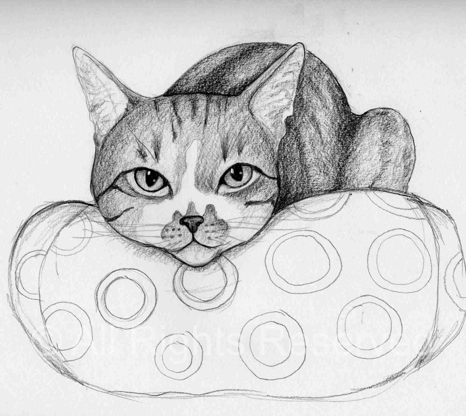 drawing of a tabby cat lying on a bed