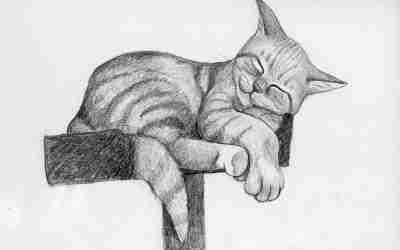 Cat Doodle 52 – Mugsy